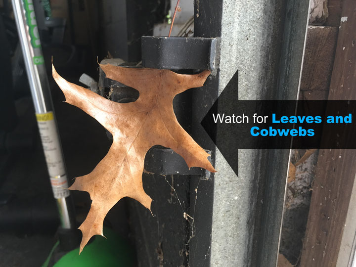 leaves and cobwebs in front of garage door safety sensors